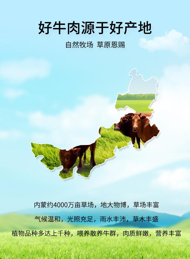 内蒙古风干牛肉干产品详情页_04.jpg