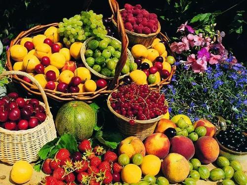 微信小程序卖水果需要多少钱?